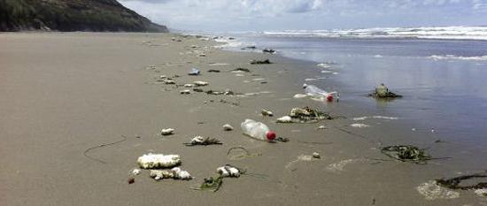 Bon Vendredi Bouteille_plastique_plage_pollution